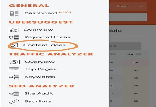 List of content ideas Ubersuggest